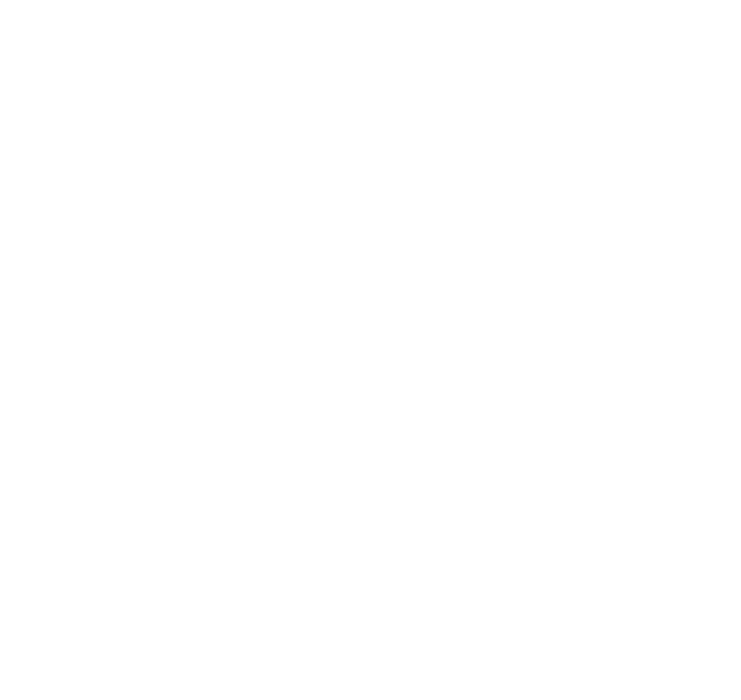 The Villagio